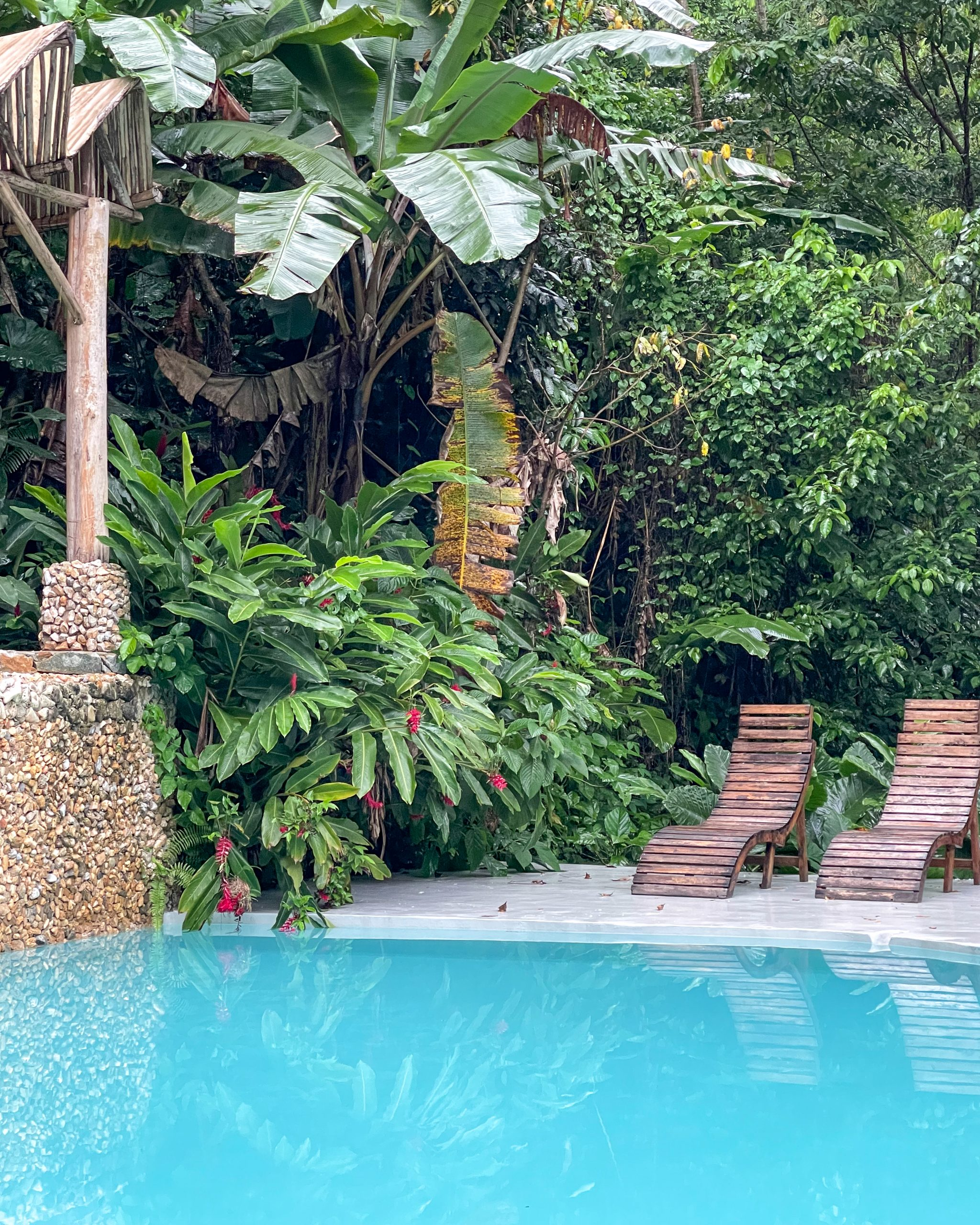 Dominican Tree House Village pool